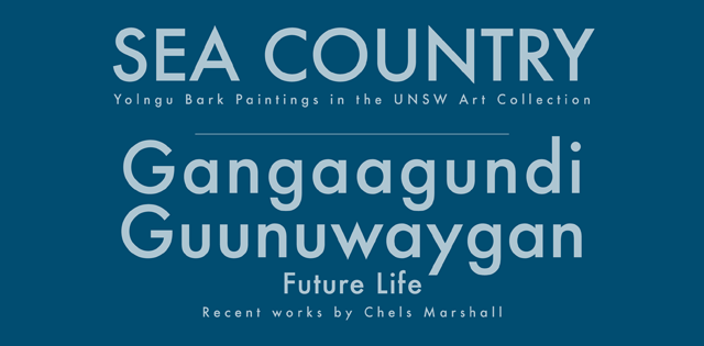 Sea Country: Yolngu Bark paintings in the UNSW Art Collection and Gangaagundi Guunuwaygan (Future Life): Recent Works by Chels Marshall
